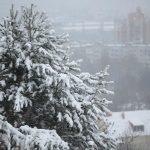 Аксенов: решение о сносе незаконного ТЦ в Симферополе примут в понедельник